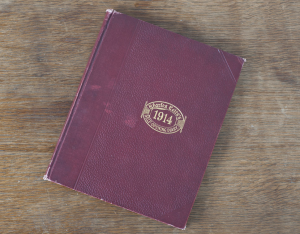 1. Olive's Diary: Cover